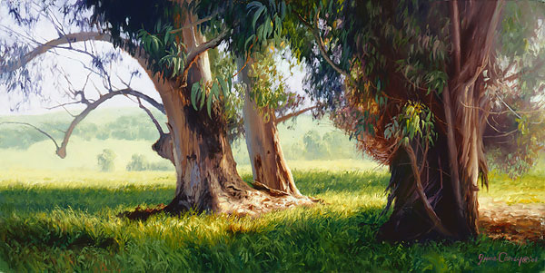 June Carey - Eucalyptus Trunks -  SMALLWORK CANVAS EDITION Published by the Greenwich Workshop