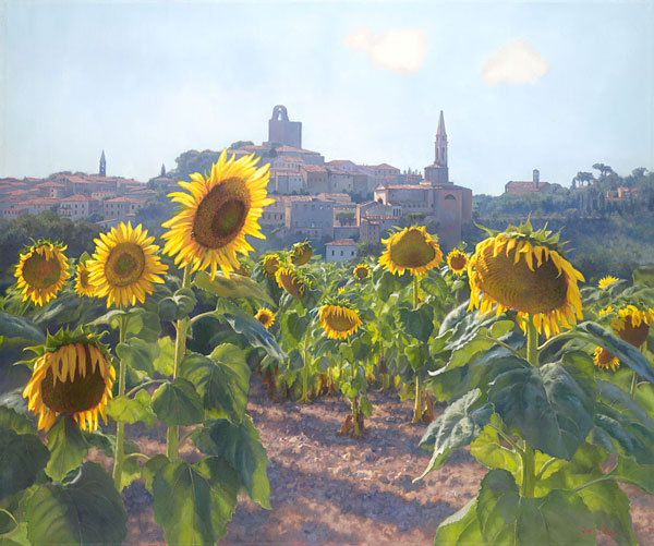 June Carey - Sunflowers of Castiglion Fiorentino -  LIMITED EDITION CANVAS Published by the Greenwich Workshop