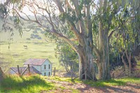 Basking Eucalyptus&lt;br&gt; LIMITED EDITION CANVAS