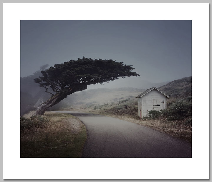 Patricia McKean - Journey´s End, Point Reyes Lighthouse -  OPEN EDITION PRINT Published by the Greenwich Workshop
