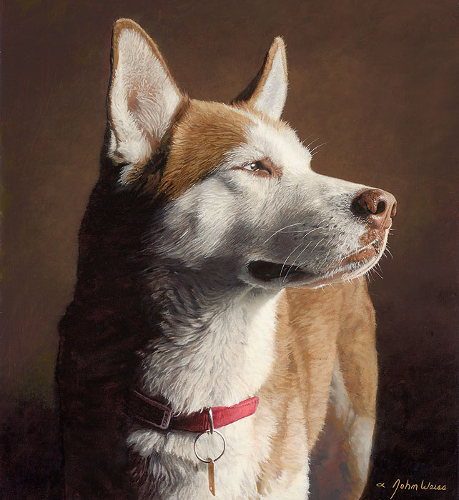 John Weiss - Husky -  OPEN EDITION CANVAS Published by the Greenwich Workshop