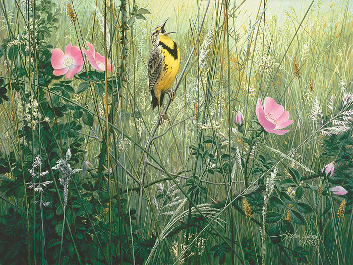 Stephen Lyman - Song of the Meadow -  OPEN EDITION CANVAS Published by the Greenwich Workshop