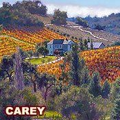 New from A. Carey